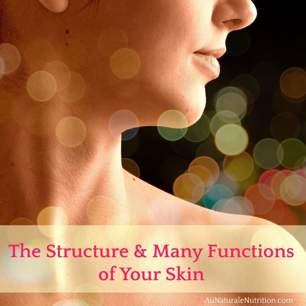 We take special care of our skin because it's the most visible part of who we are physically. But, do you know exactly what your skin does for you? Why does collagen matter? And what happens within your skin that causes wrinkles and other changes?