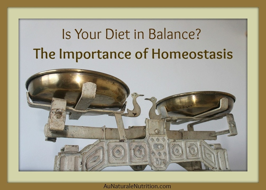 Homeostasis & Dietary Direction: Where are YOU Headed? How to understand Anabolic, catabolic, and neutral metabolism.  Which direction is right for you?  By Jenny at www.AuNaturaleNutrition.com